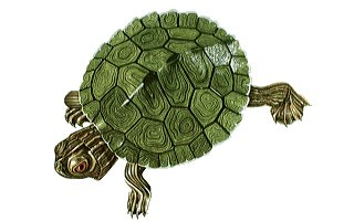 Tortoise Trust Web - AQUATIC TURTLECARE