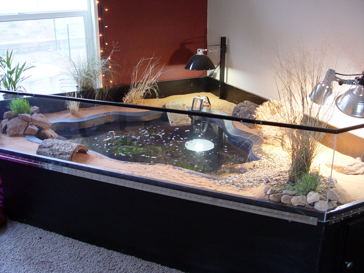 Surface Mount Ponds For Slider And Other Aquatic Turtles